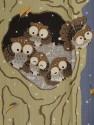 owls tree night