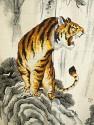Tiger noren
