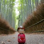 🇬🇧 Social distancing is easier in Arashiyama without the foreign tourists, but the local shopkeepers and craftsmen miss them a lot! Adopt your favourite kokeshi dolls on ✨ Tokyo-Smart.com ✨ 🇫🇷 La distanciation sociale est plus simple à Arashiyama sans les touristes étrangers, mais ils manquent beaucoup aux commerçants et artisans locaux ! Adoptez vos kokeshi préférés sur 🌟 Tokyo-Smart.com 🌟 . . #kokeshidoll #kokeshi #kyoto #arashiyama #japan_focus #japangram #japan_of_insta #japanphotography #japan_photo_now #japaneselife #japantourism #Japon #japan_vacations #japanesestyle
